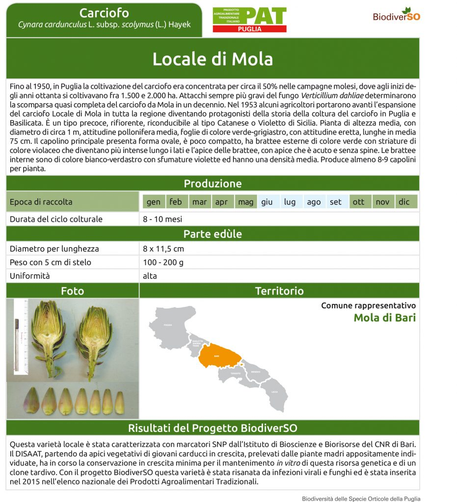 locale-di-mola-1