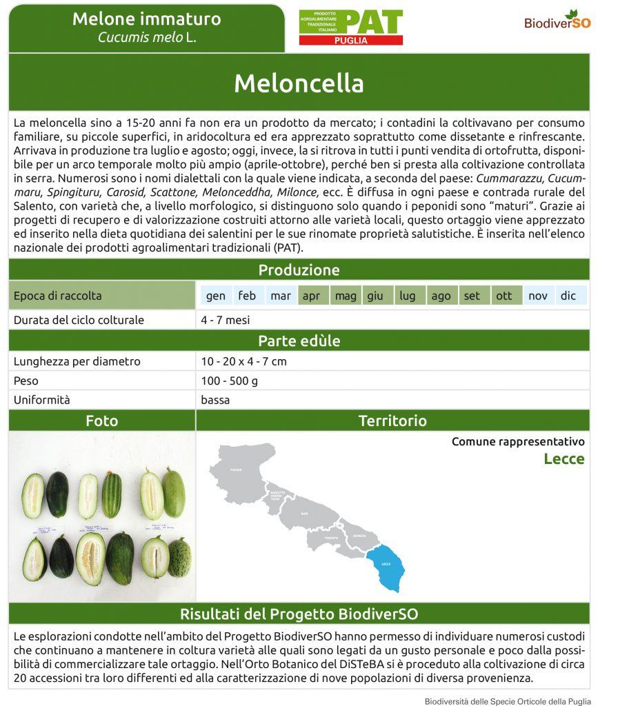 meloncella-1