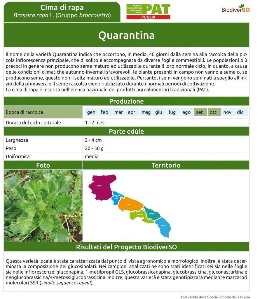 quarantina-1