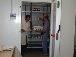camera di conservazione