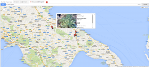 Dislocazione dei campi sulla mappa con riquadro di dettaglio.