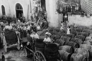 Fiera di San Vito a Ortelle (Le): vendita del vino