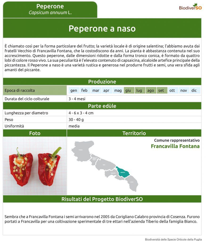 peperone-a-naso-1