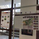 Progetti di biodiversità